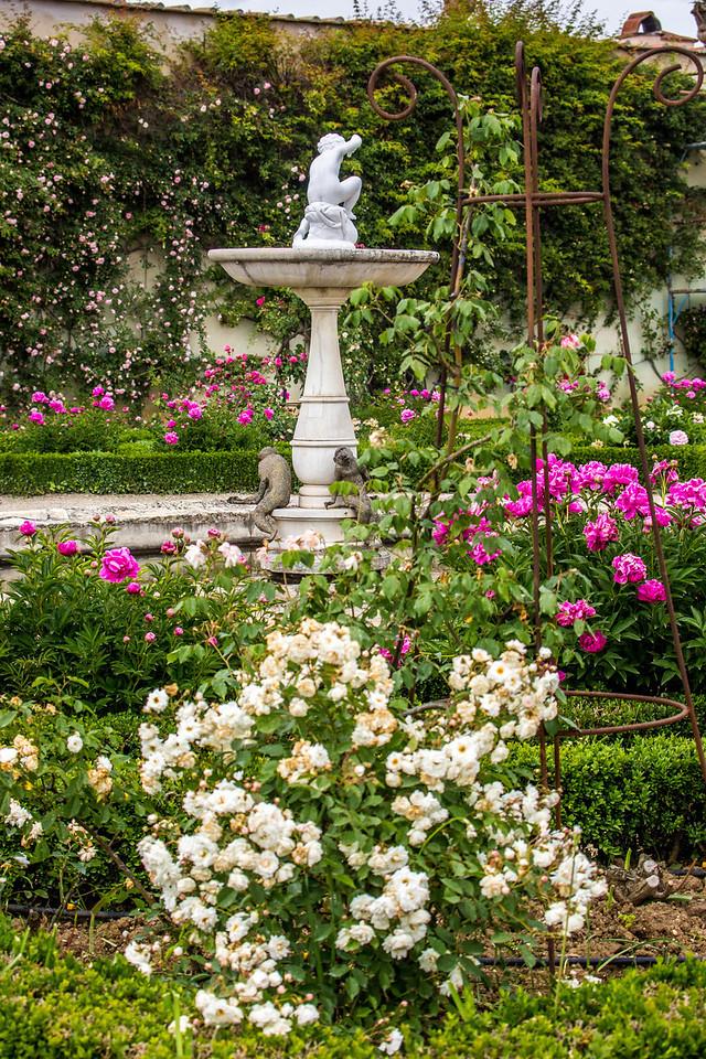 Florence - Boboli Gardens-2542
