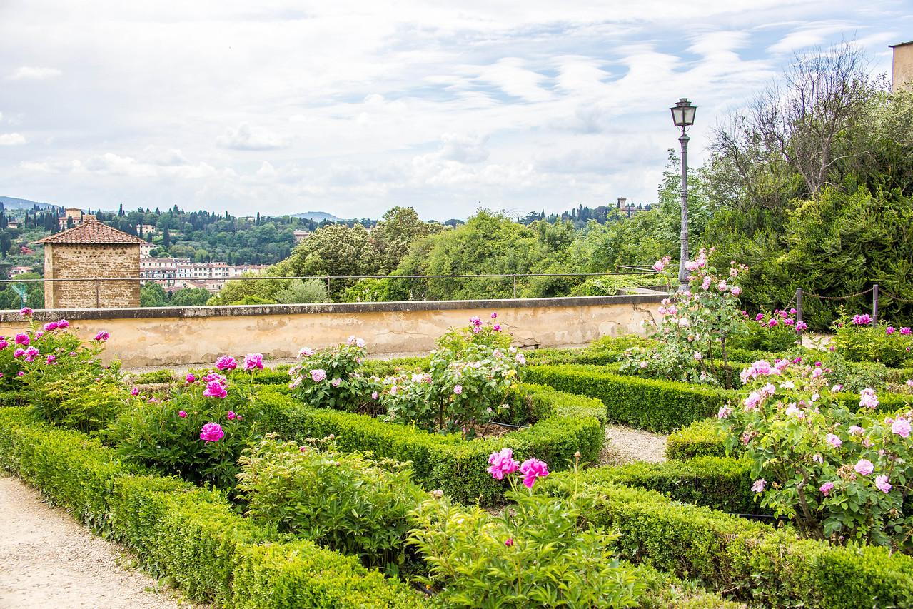 Florence - Boboli Gardens-2531