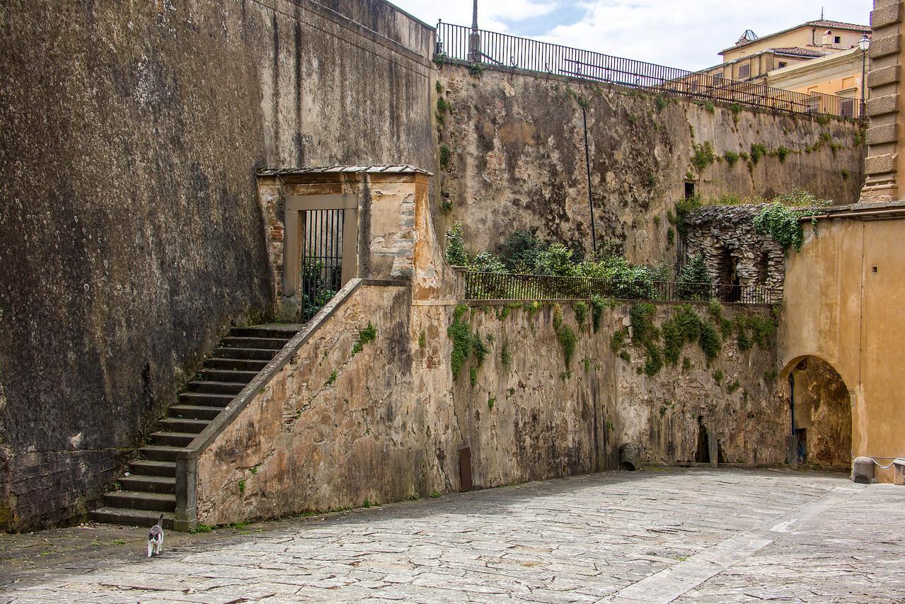 Florence - Boboli Gardens-2484