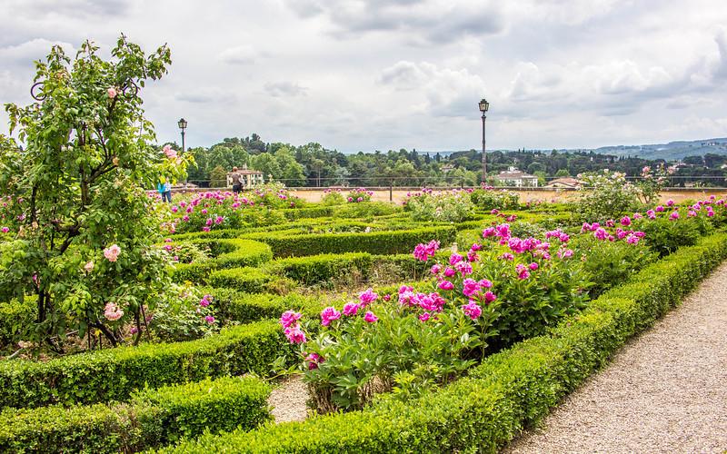 Florence - Boboli Gardens-2526