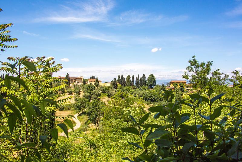 Florence-2813