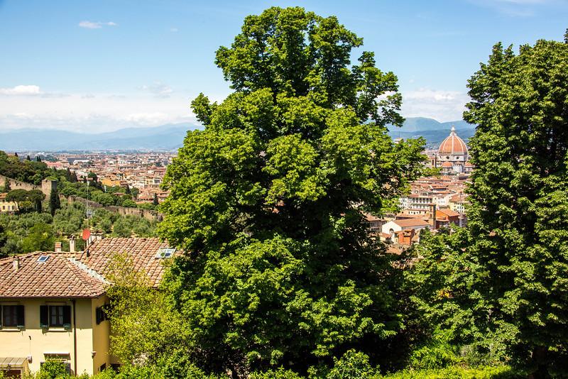 Florence-2832