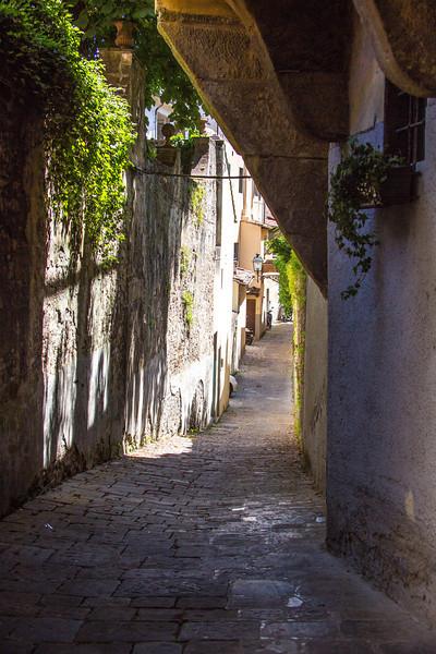 Florence-2779