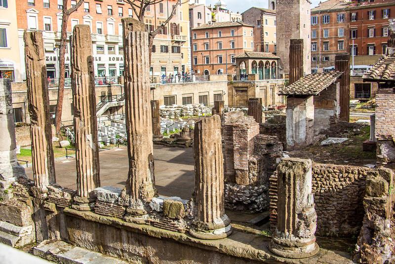 Rome Cat Ruins-3032
