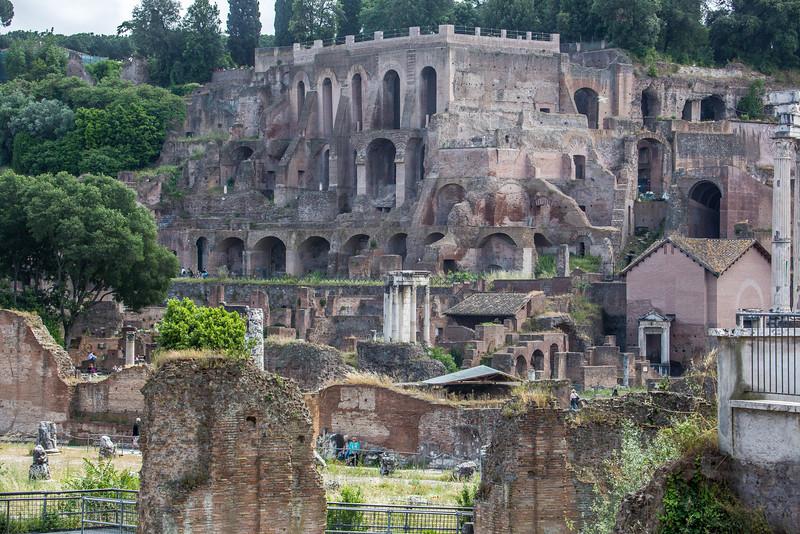 Rome - Forum-3377