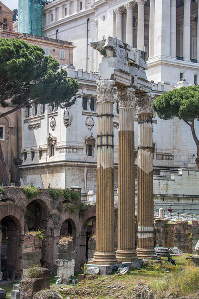 Rome - Forum-3381