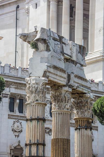 Rome - Forum-3382