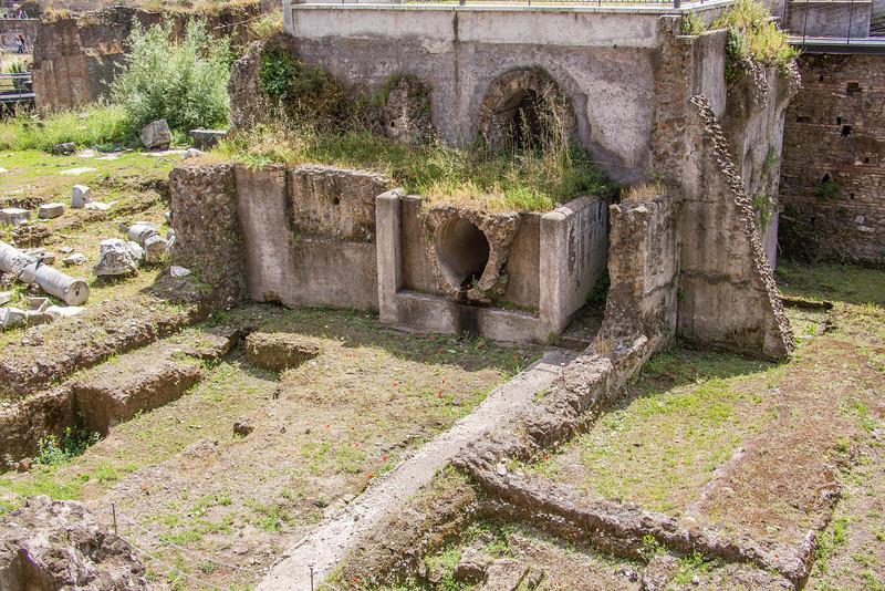 Rome - Forum-3375