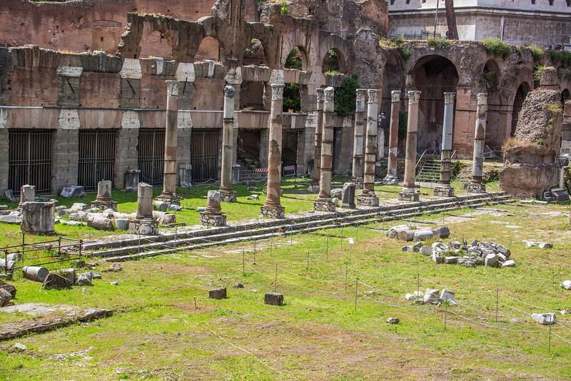 Rome - Forum-3376