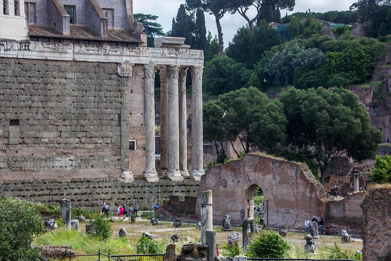 Rome - Forum-3378