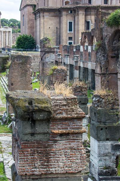 Rome - Forum-3400
