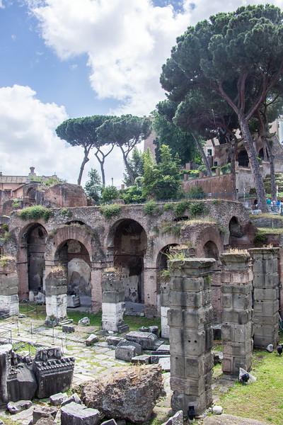 Rome - Forum-3390