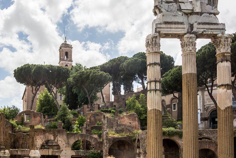 Rome - Forum-3385