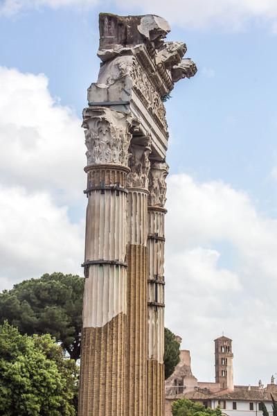 Rome - Forum-3396