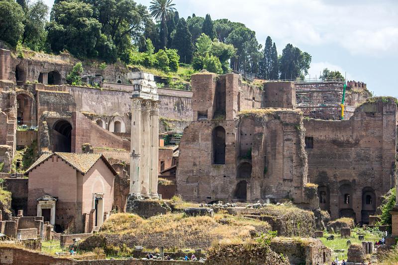 Rome - Forum-3374