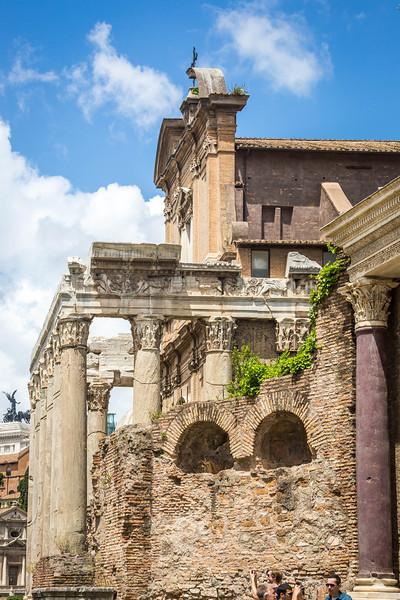 Rome-Forum-3705