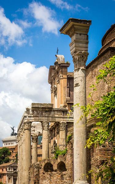 Rome-Forum-3703