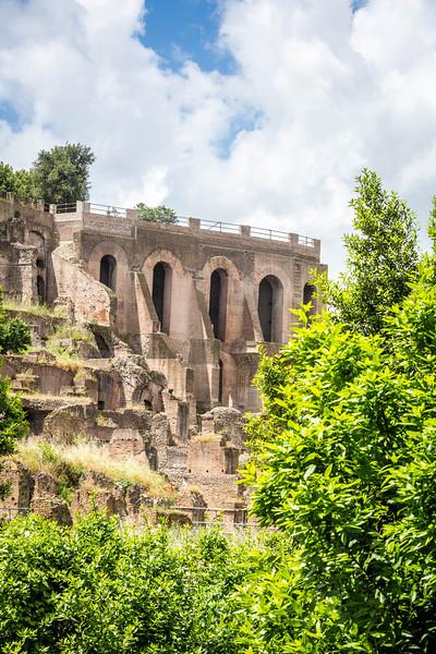 Rome-Forum-3699