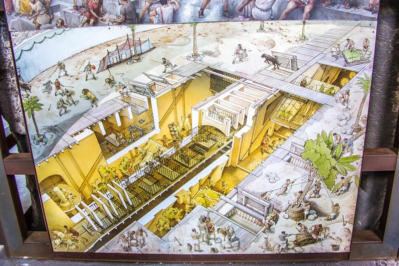 Rome - Colosseum-3576