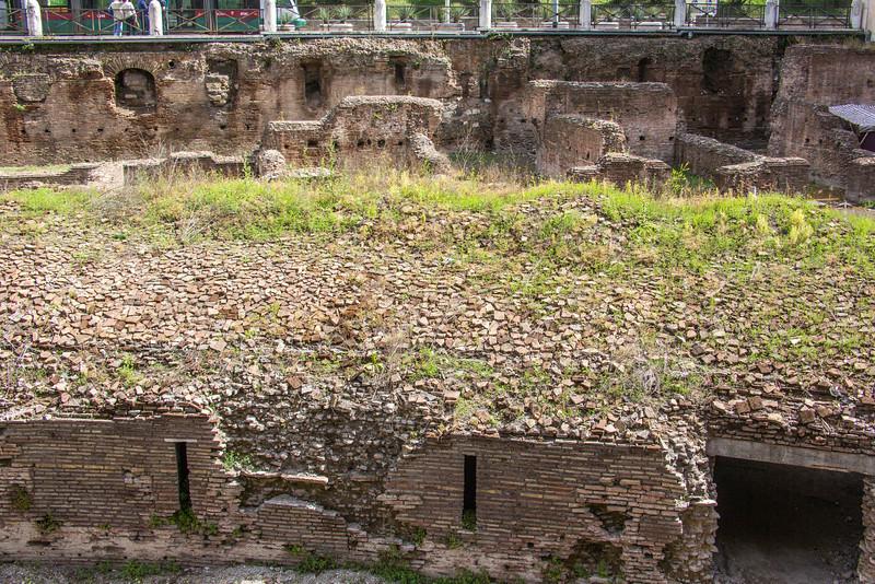 Rome - Colosseum-3547