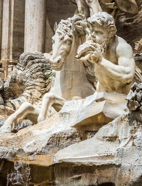 Rome-Trevi Fountain-3913