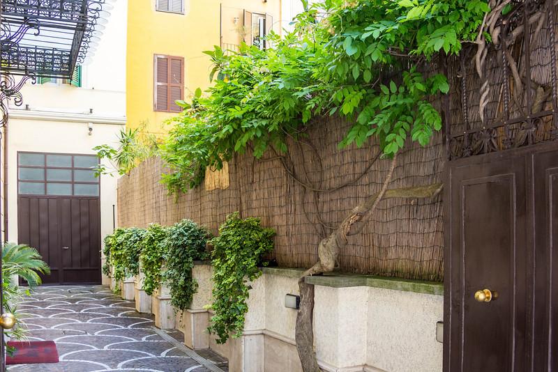 Rome-3796