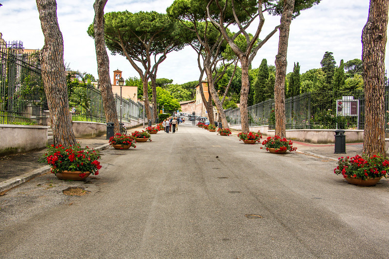 Rome - Rose Garden-4393