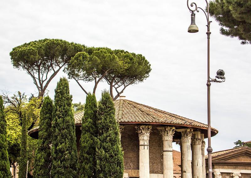 Rome - Piazza Santa Maria-4386