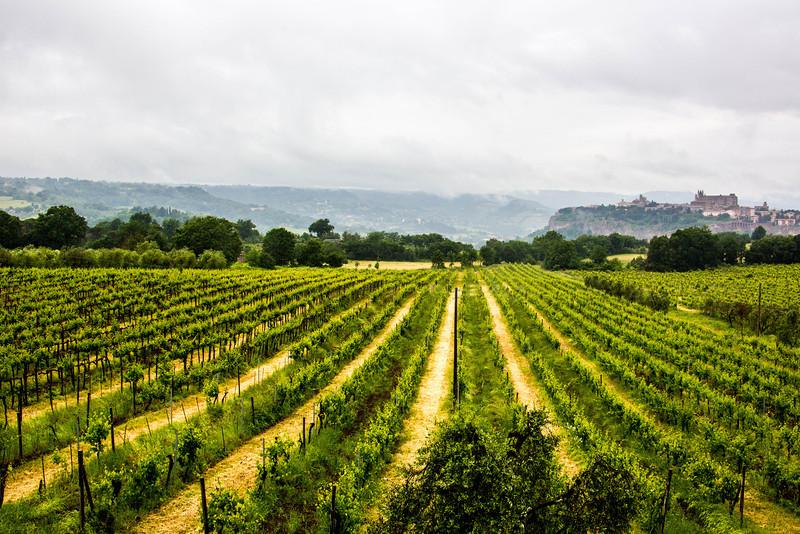 Unbria - Wine Tasting-2886
