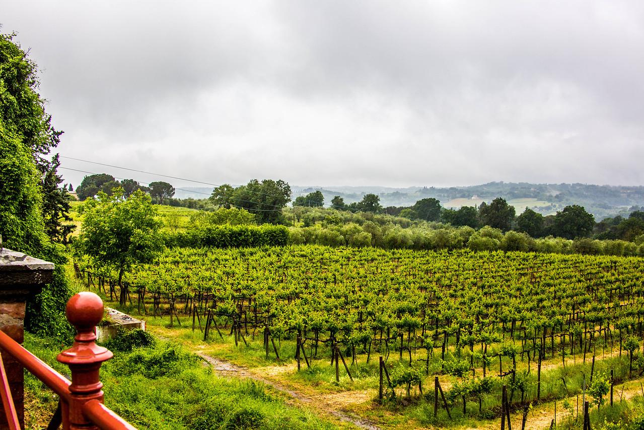 Unbria - Wine Tasting-2888