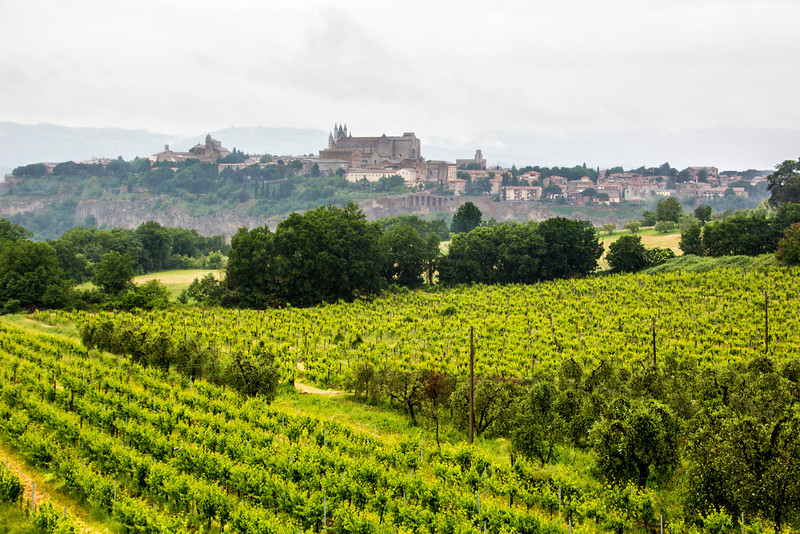 Unbria - Wine Tasting-2879