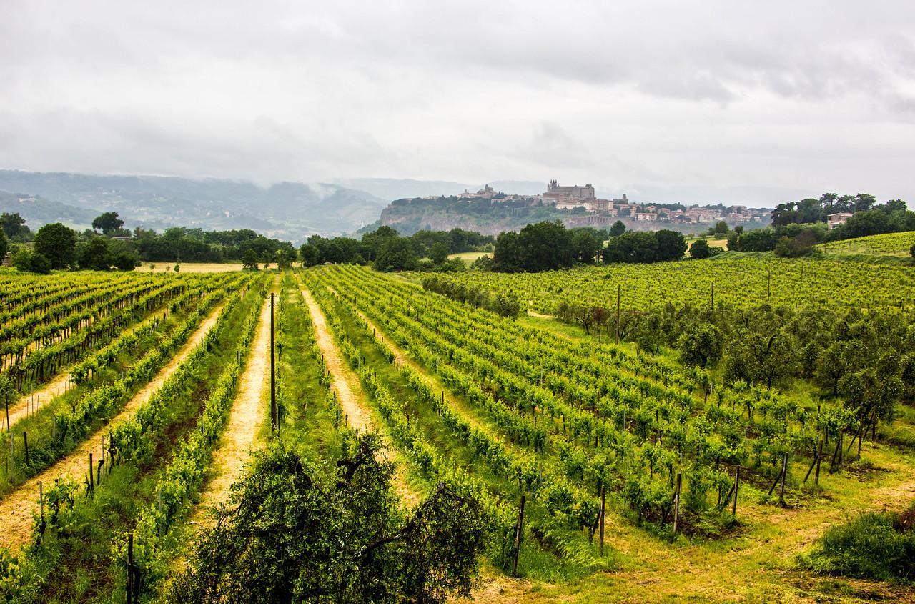 Unbria - Wine Tasting-2880