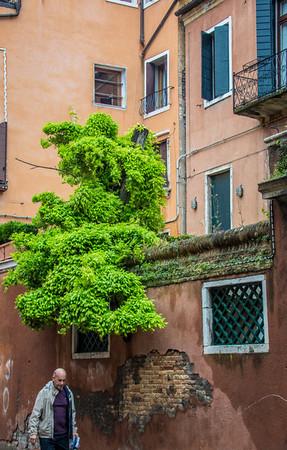 Venice-Streets-0795
