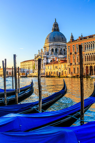 Venice-Day 3-Gondolas at Dawn-1769
