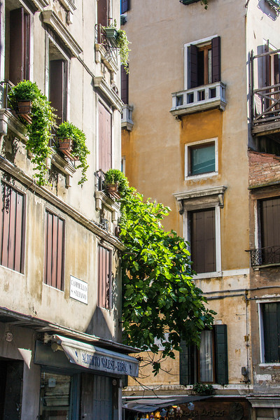 Venice - Side Streets-1788