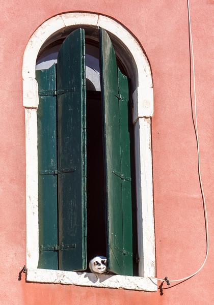 Venice - Side Streets-1786