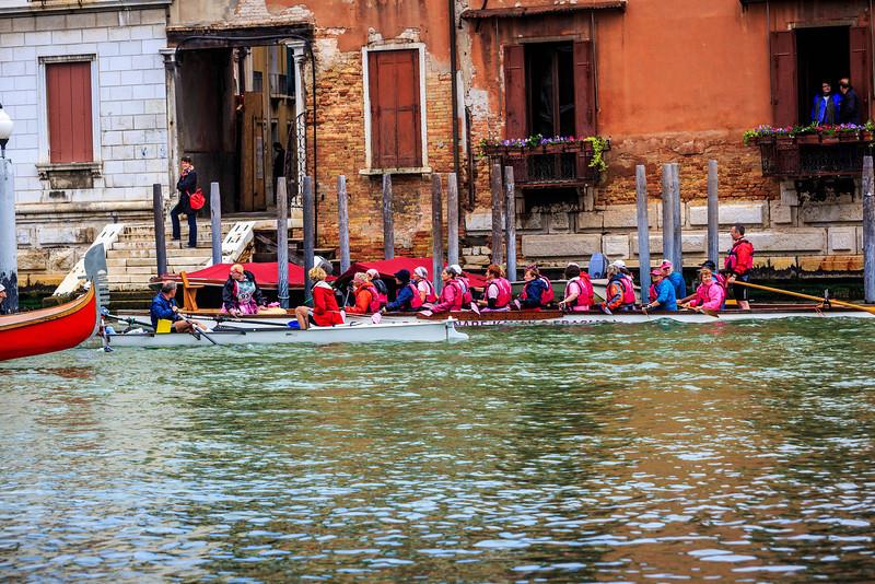 Venice - la Vogalonga -2035