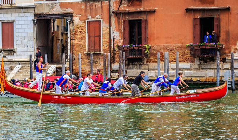 Venice - la Vogalonga -2037