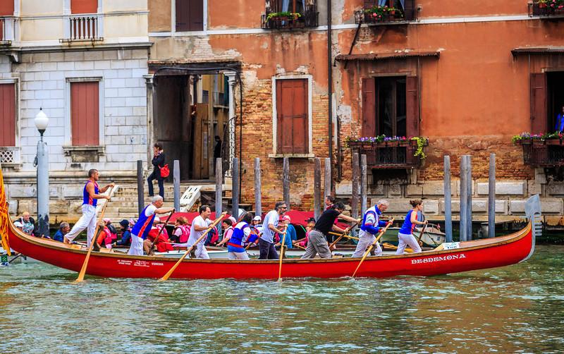 Venice - la Vogalonga -2036