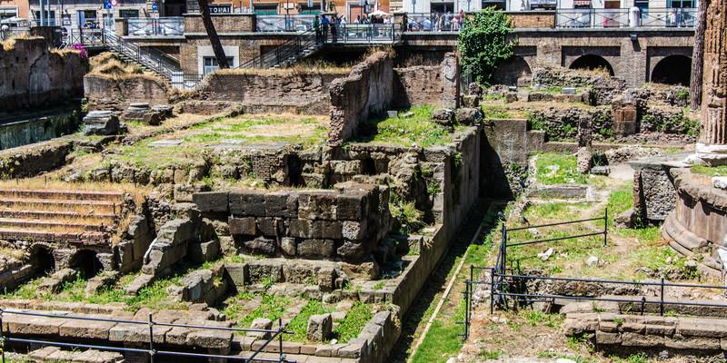Rome-Largo Agentino Ferrel cats-8154