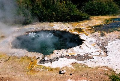 Boiling water (Rotorua)