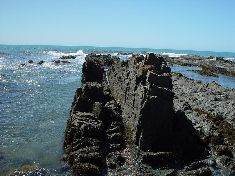 The beach at Kaka point.<br /> Sony F707