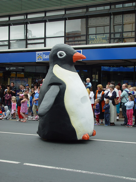 "A ""little"" blue eyed penguin, Santa Parade Dunedin"