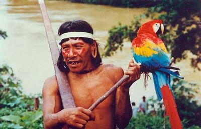 Huaorani father (1996) with macaw & blow gun