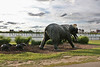 Windsor art elephants KK_002