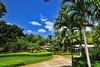 Palms Vista_003