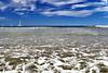 diria Beach GM_005p