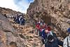 EGP_0365 Mount Sinai_