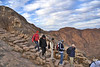 EGP_0311 Mount Sinai_