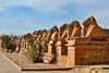 Ave of Rams-Karnak_005_F